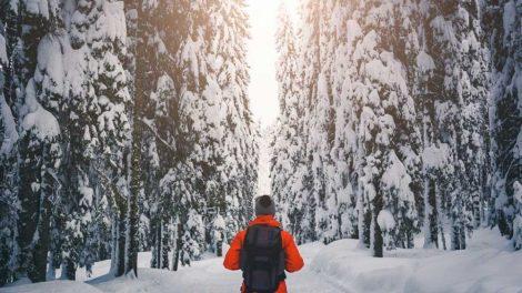 Finland—Your Ultimate Water Getaway
